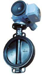 Motorized Butterfly valve DN250..400